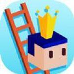 梯子之王安卓版 V1.0