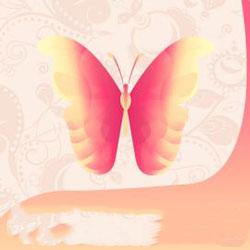 蝴蝶直播安卓版 V1.0