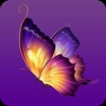 蝴蝶影院安卓版 V1.03