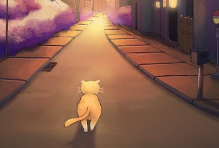 敢问猫在何方