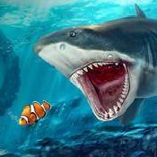 愤怒鲨鱼海洋模拟器安卓版 V1.1.5