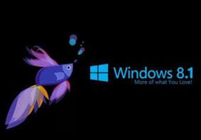 Win8系统电脑硬盘占用率100%的解决办法