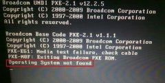 """WinPE系统重启出现""""operating system not found"""""""