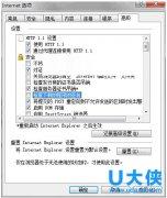 Ghost win7纯净版下IE浏览器下载附件停留在99%